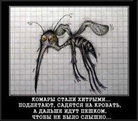 Як зробити, щоб не турбували комарі