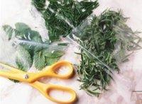 Як заготовити зелень на зиму