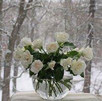 Як законсервувати аромат троянд